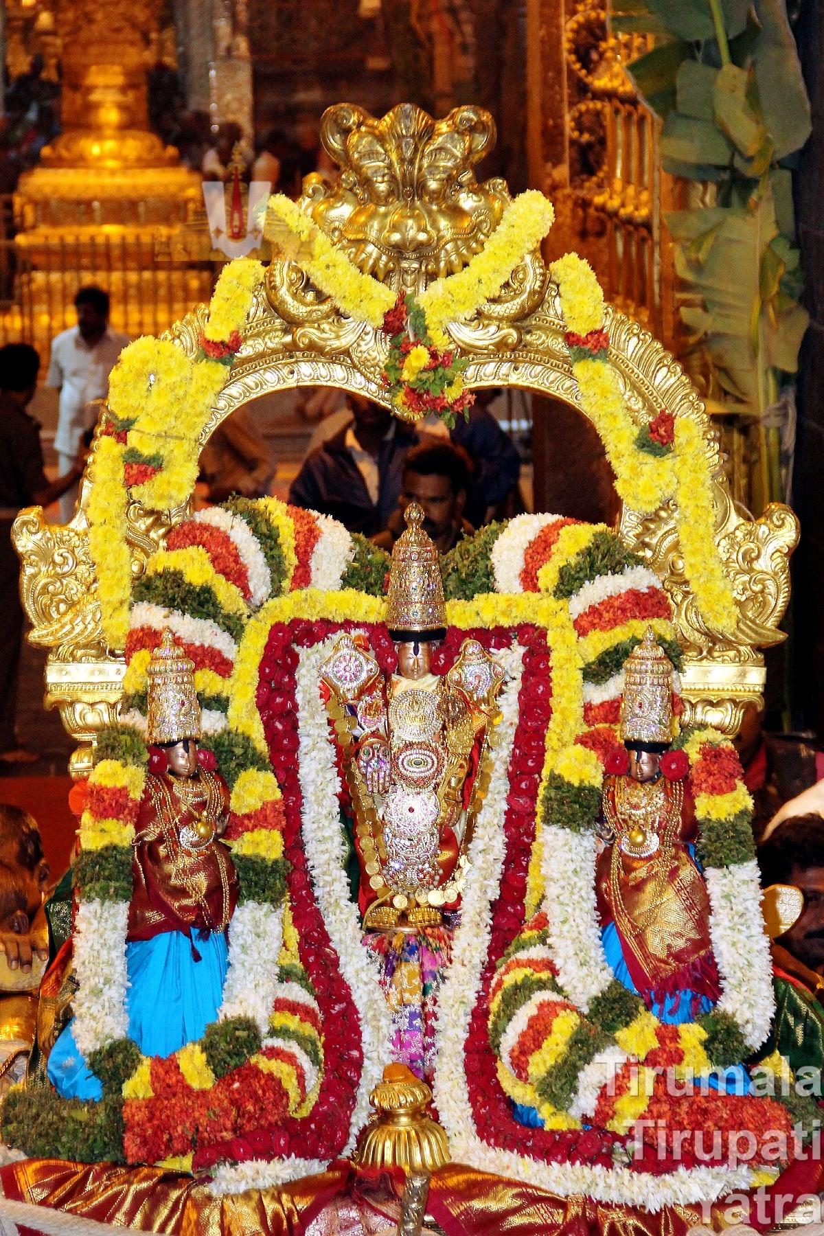 Snapana Murthy